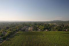 Napa, California countryside